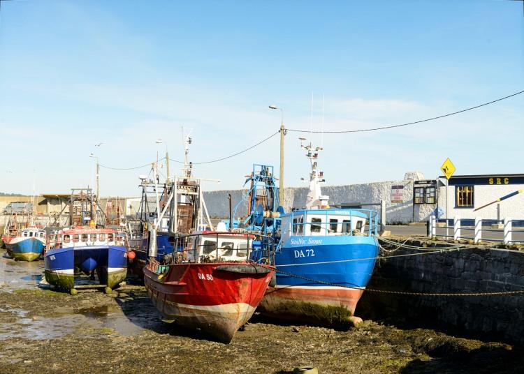 Skerries Harbour - Low Tide