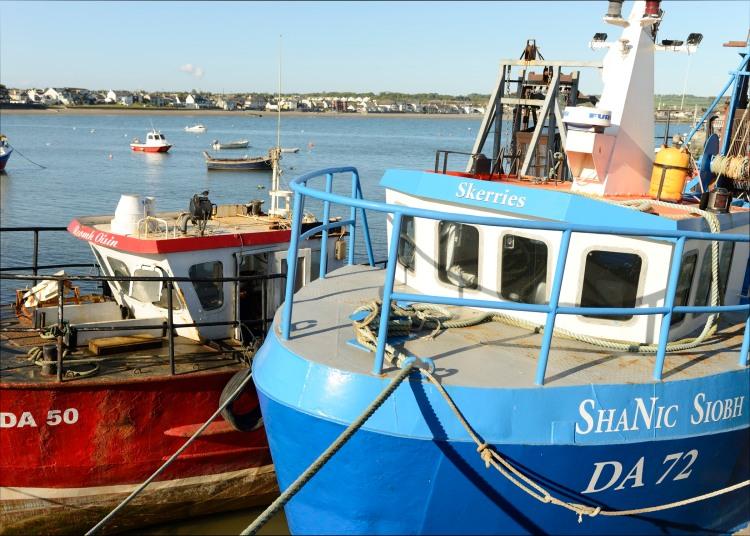 In Skerries Harbour